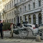 Carriages in the City